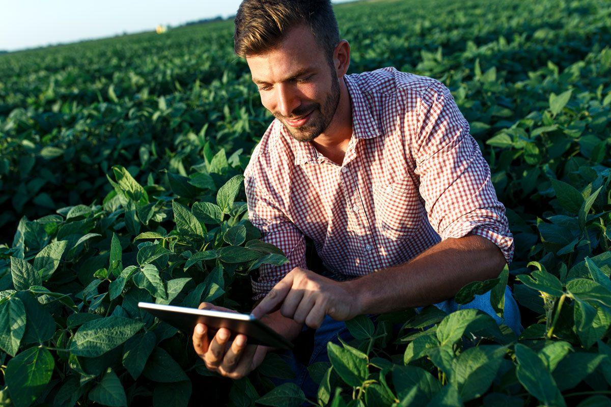 Evento S-1260 do eSocial – Uma breve realidade ao produtor rural