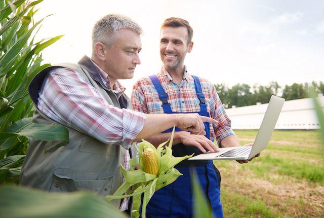 LCDPR (Livro Caixa Digital do Produtor Rural): o que você precisa saber