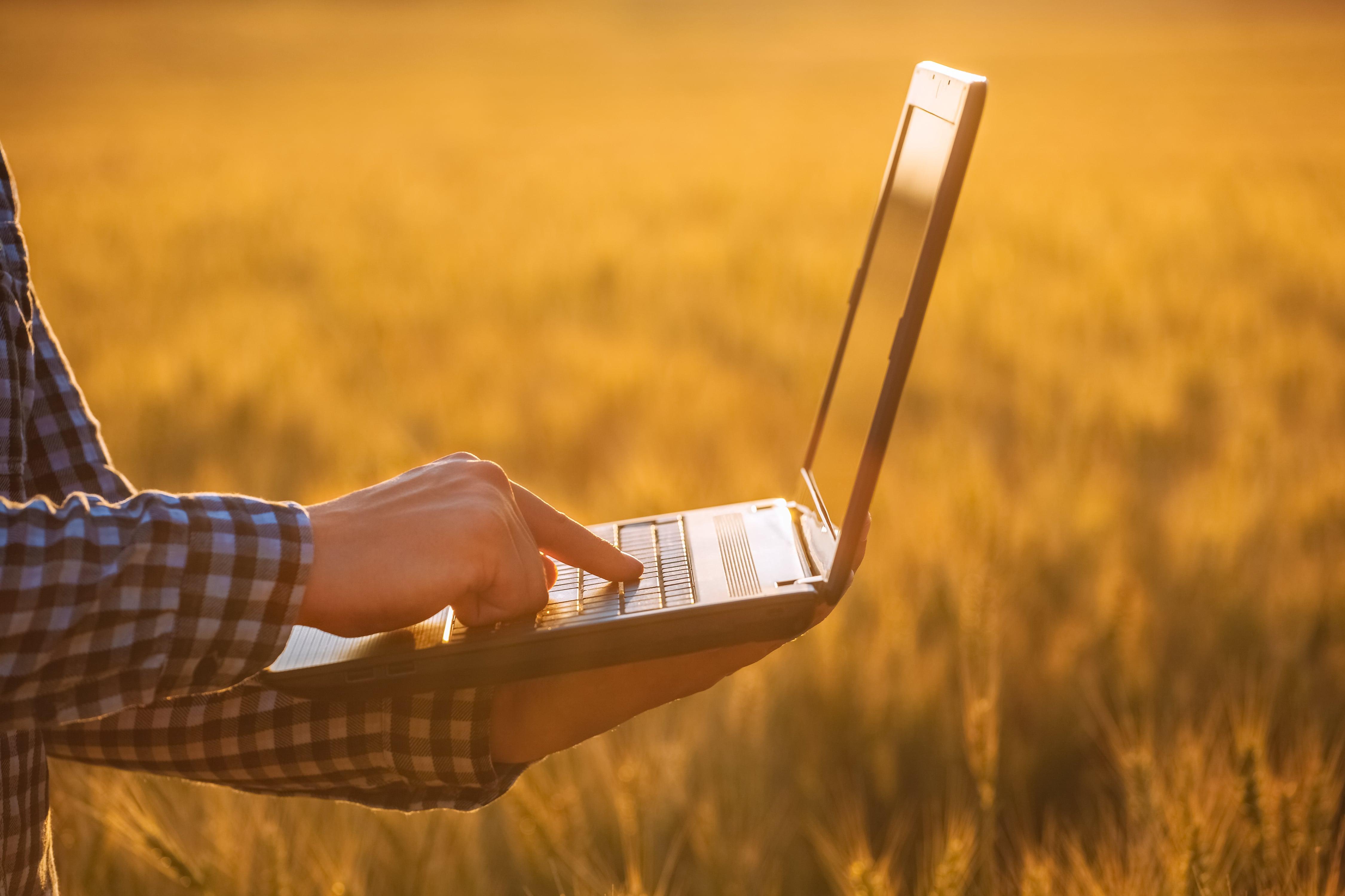 Livro Caixa Digital do Produtor Rural: RF aponta inconsistências